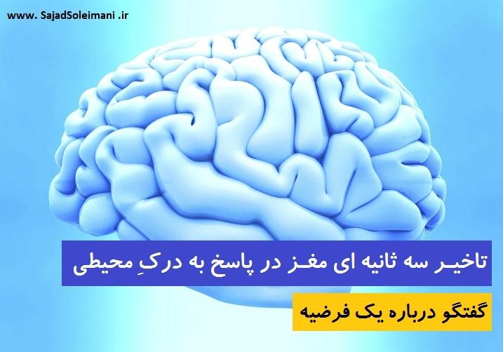 Cerebrum مغز
