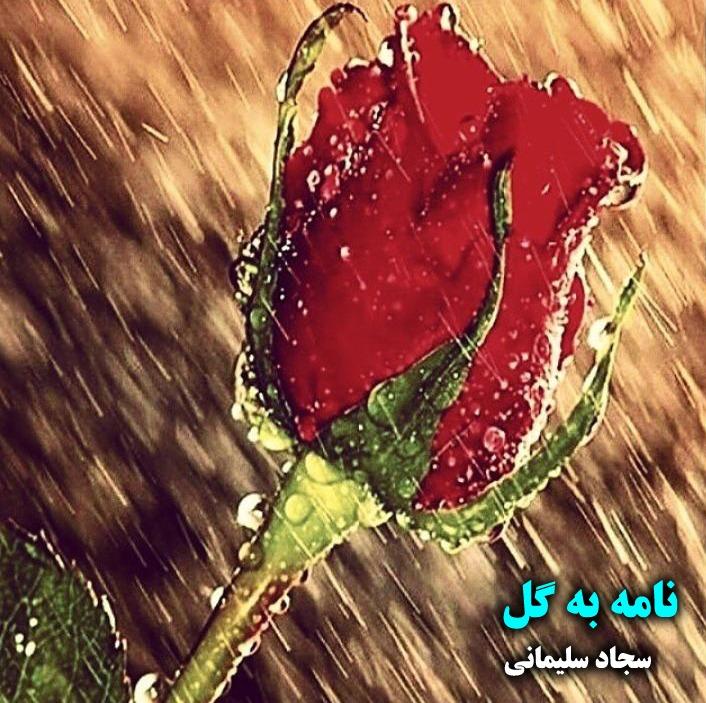 نامه به گل - نامه های عاشقانه - سجاد سلیمانی